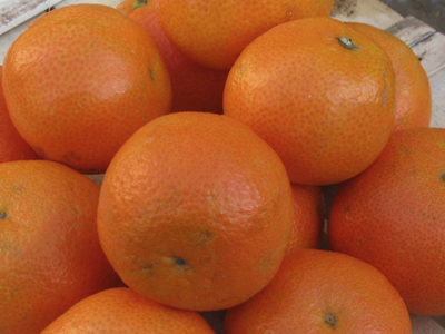 Clementines 800gm