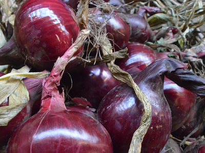 Red Onions 500gm