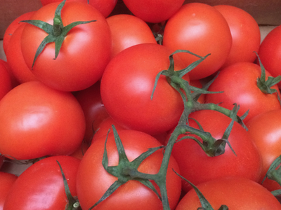 Tomatoes 450 gm
